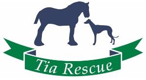 Tia Greyhound & Lurcher Rescue