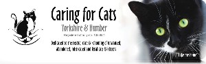 Caring For Cats Yorkshire And Humber