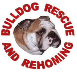 Bulldog Rescue & Re Homing