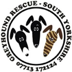 Greyhound Rescue South Yorkshire