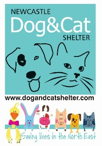 Newcastle Dog & Cat Shelter