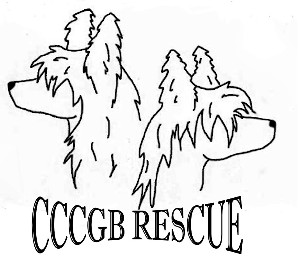 The Chinese Crested Club Of Great Britain Rescue