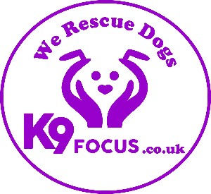 K9 Focus Dog Rescue