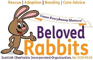 Fairly Beloved Rabbit Care