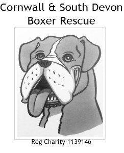Cornwall & South Devon Boxer Rescue