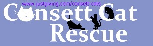 Consett Cat Rescue